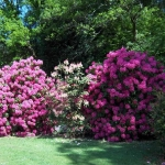 May Weather Report